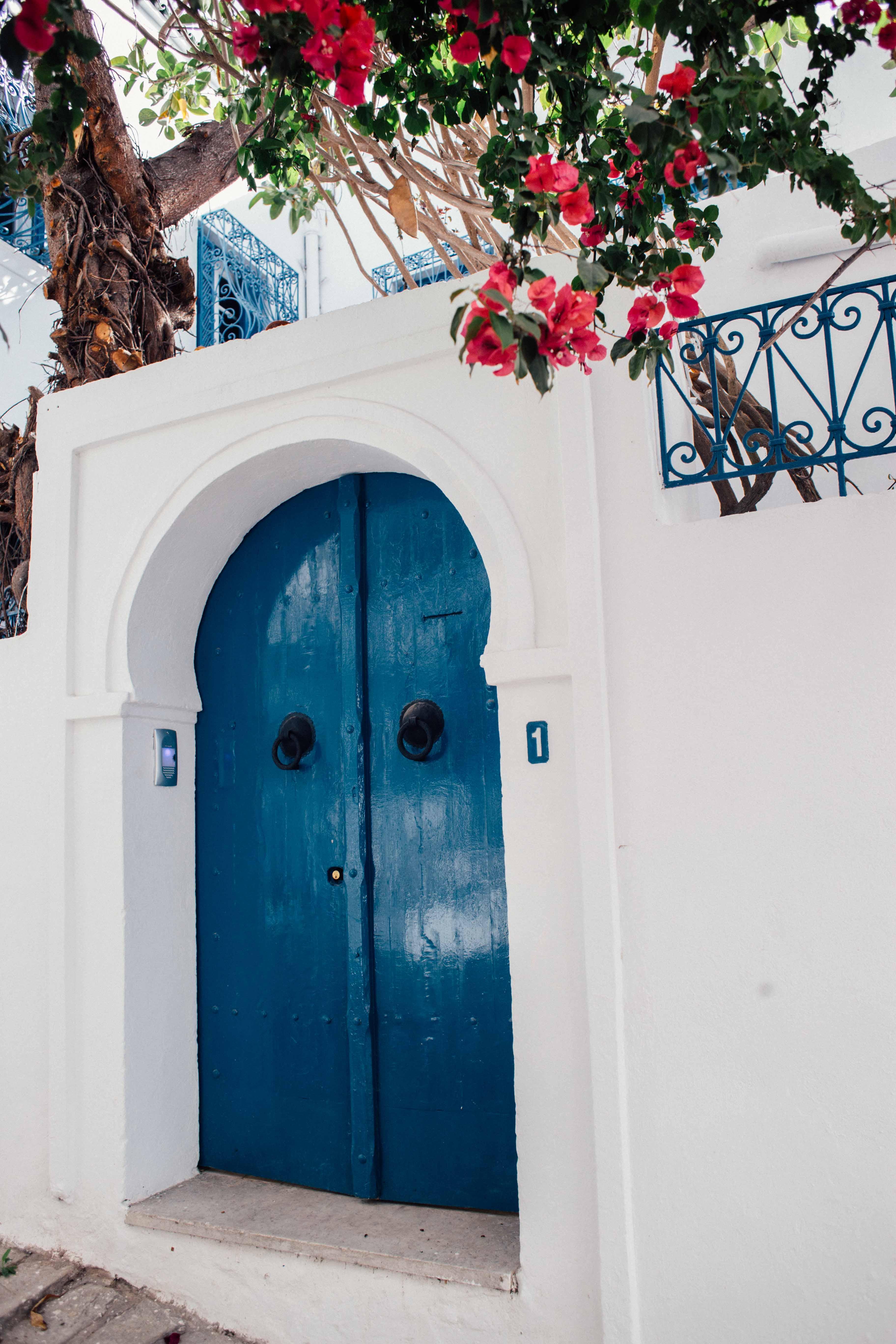 lucie_sassiat-engagement-tunisie-sidi_bou_said-leblogdemadamec.fr-3