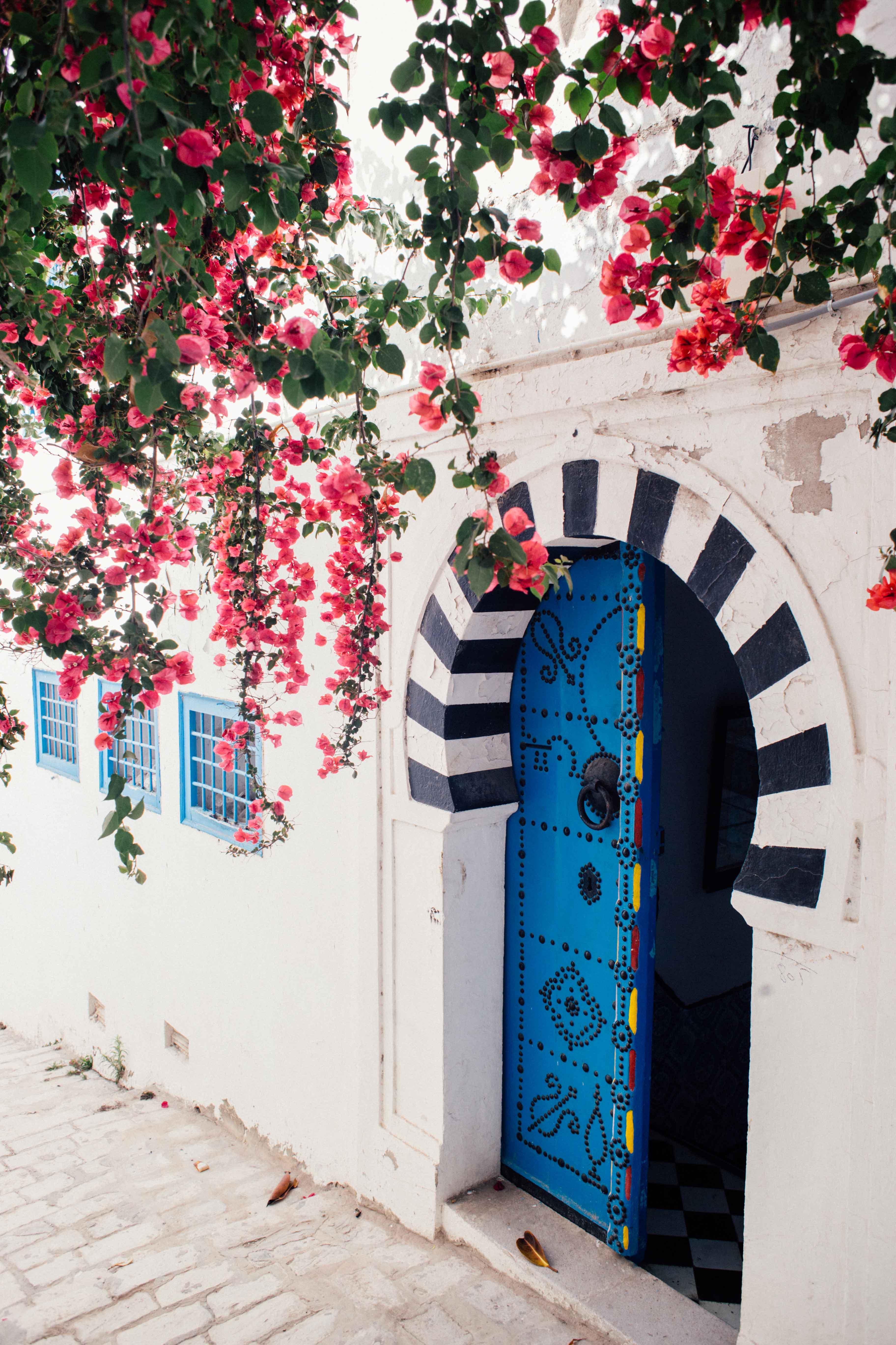 lucie_sassiat-engagement-tunisie-sidi_bou_said-leblogdemadamec.fr-4