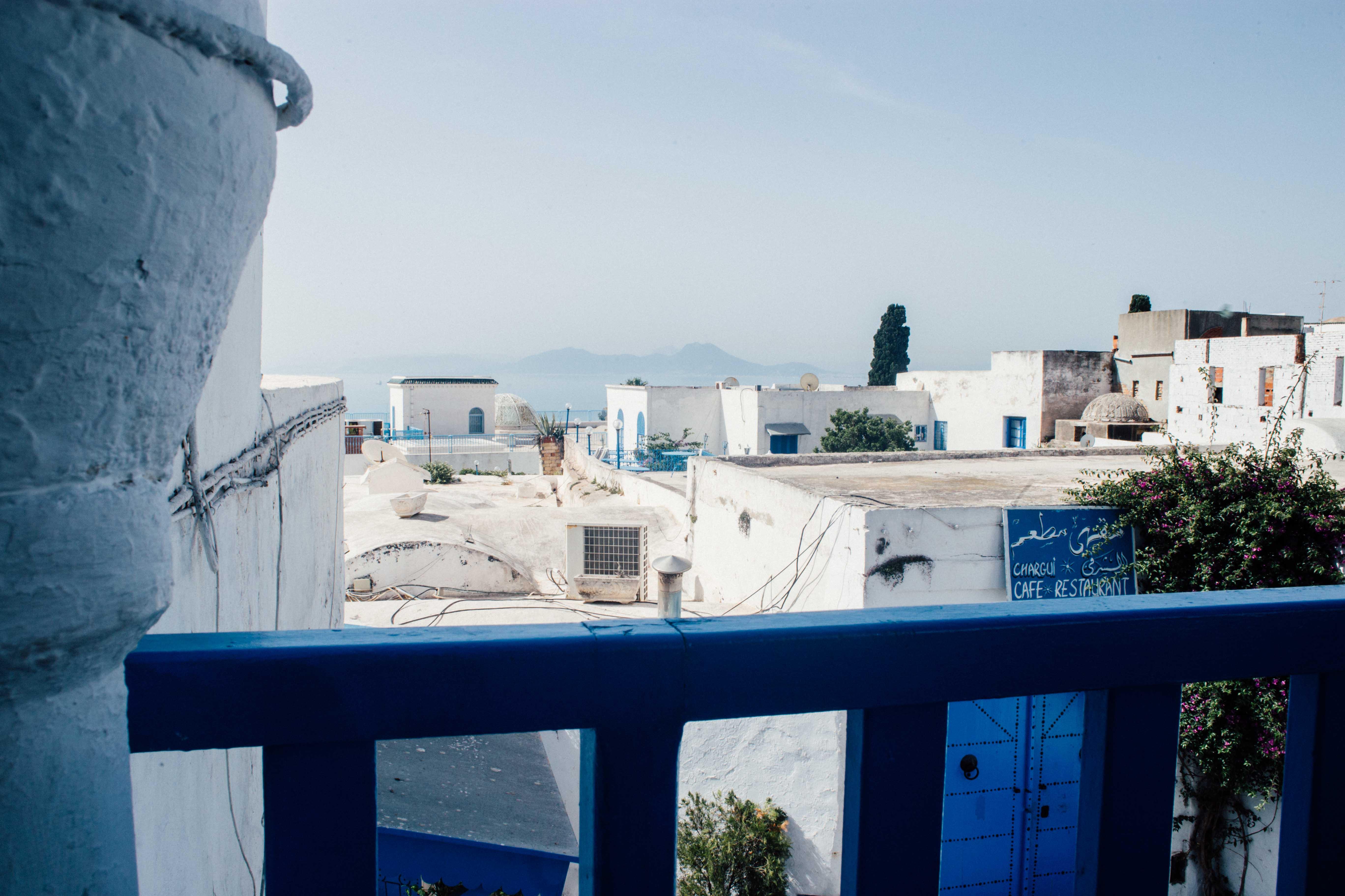 lucie_sassiat-engagement-tunisie-sidi_bou_said-leblogdemadamec.fr-6